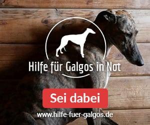 Tierschutzverein SOS-Dogs e.V.