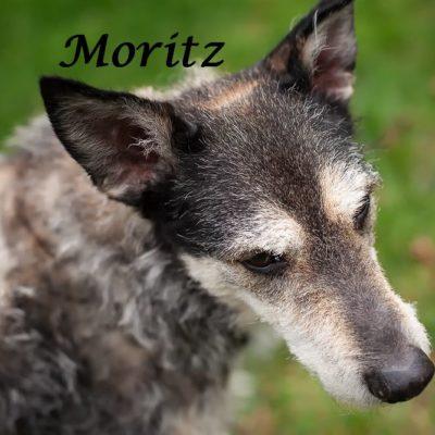 Moritz_22022020-(10)