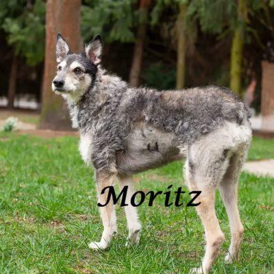 Moritz_22022020-(19)
