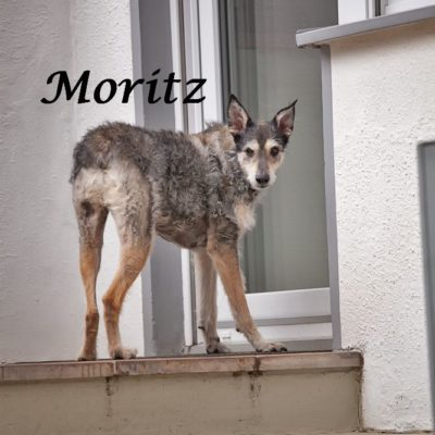 Moritz_22022020-(20)