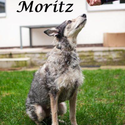 Moritz_22022020-(3)