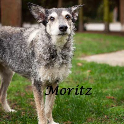 Moritz_22022020-(8)