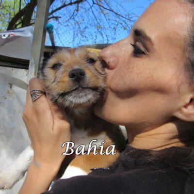 Bahia IMG_5792
