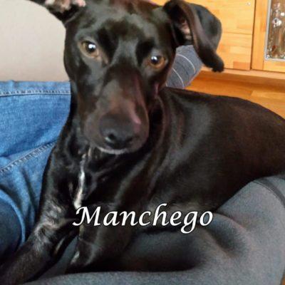Manchego IMG-20200312-WA0024