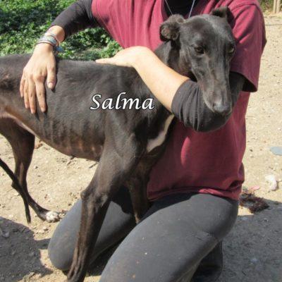 Salma IMG_5920