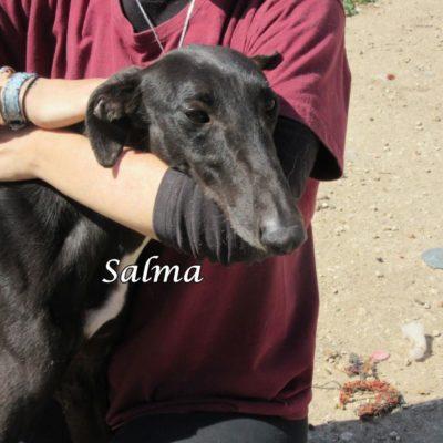 Salma IMG_5921