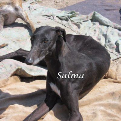 Salma IMG_5928