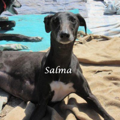 Salma IMG_5939
