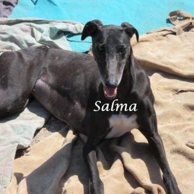 Salma IMG_5941